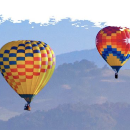 Picture of Hot Air Balloons In Flight