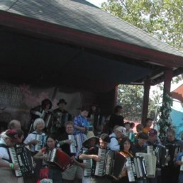 Cotati Accordion Festival link