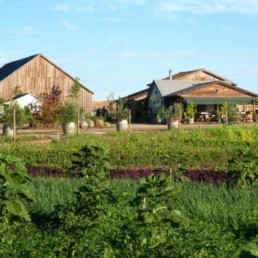 Picture of barn and garden on a Sonoma County farm