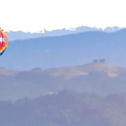 Balloons over Sonoma County