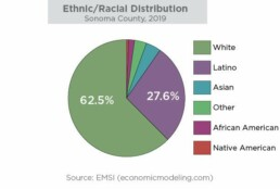 Ethnic/Racial Distribution, Sonoma county, 2019, pie chart White, blue, 62.5% Latinx, green, 27.61% Asian, forest green, approximately 4% African American, maroon purple, approximately 2% Native American, orange, approximately less than 1% Other, purple, approximately 3% Source: Economic Modeling, LLC (EMSI)
